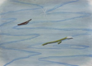 http://aishachristison.com/files/gimgs/th-26_Water-scene-with-flower-and-leaf-dry-pastel-on-paper-65x90cm-2018.jpg